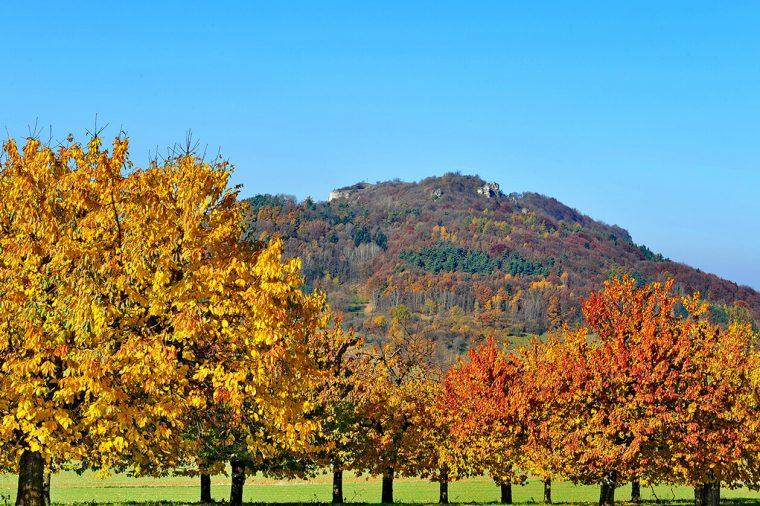 Herbstfarben zum Sattsehen
